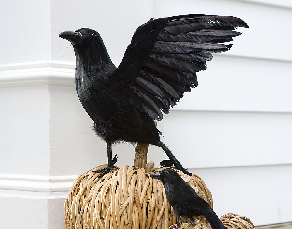 fun halloween decoration ideas for your home inside and out - Halloween Crows