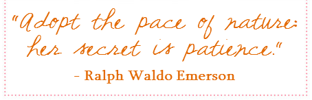 adopt the pace of nature quote emerson