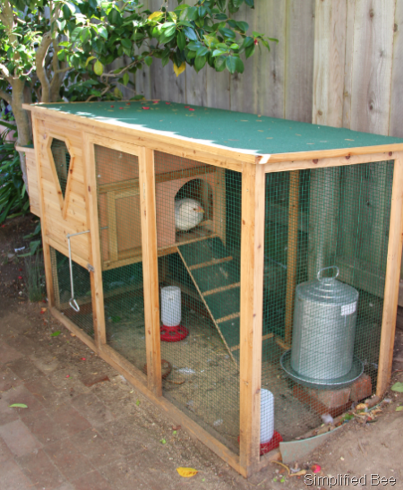 Our Backyard Chicken Coop Simplified Bee