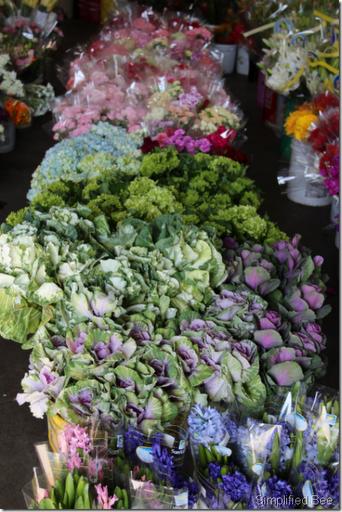 cabbage flowers san francisco mart