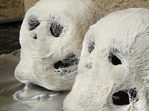 Halloween Skulls with Spider Web