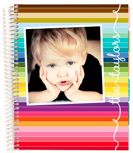 Erin Condren Daily Planner 2013