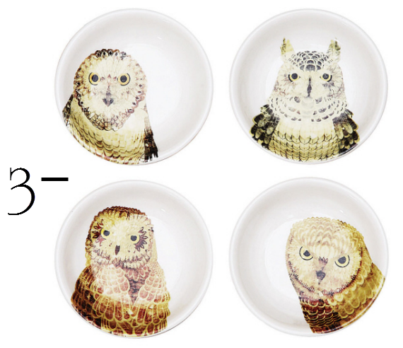 hostess gifts owl dishes