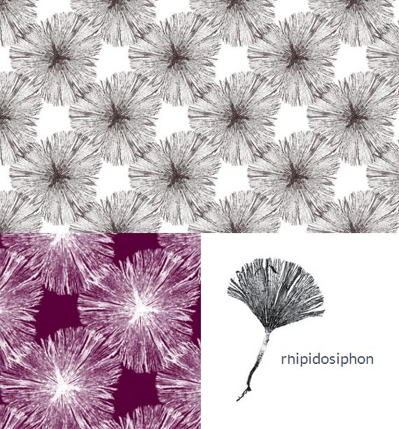 nettle + fin modern fabrics