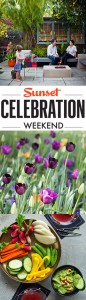 Sunset Celebration Weekend // June 6-7, 2015
