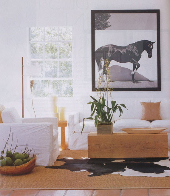 2016 Decor Trends :: Modern Southwest - Simplified Bee