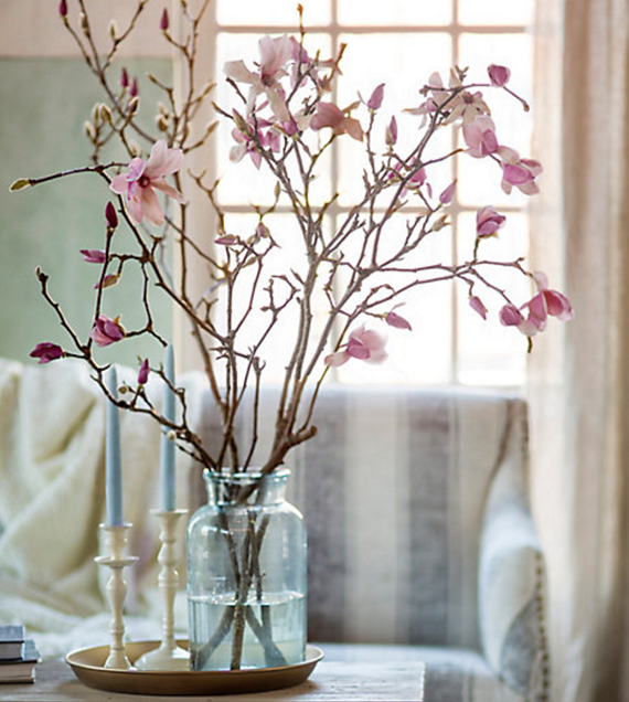 tulip magnolia branches // spring blossoms