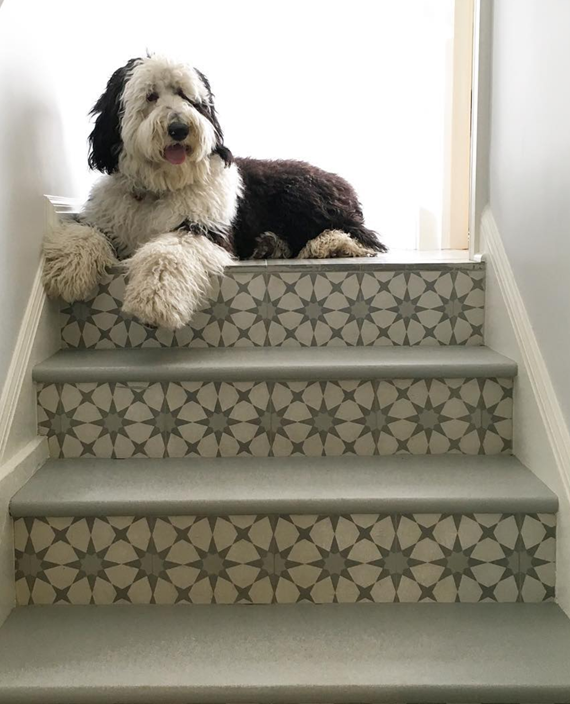 beautiful staircases // cement tiles // @simplifiedbee #staircases #tiles