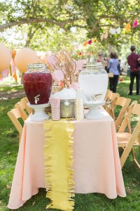 drink table #picnic #birthday #party